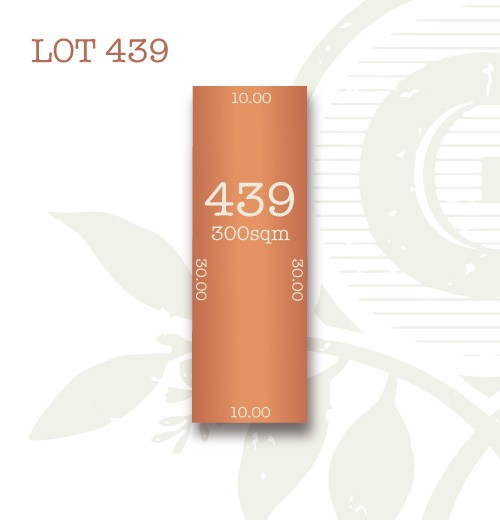Lot 439