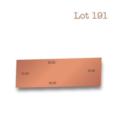 Lot 191