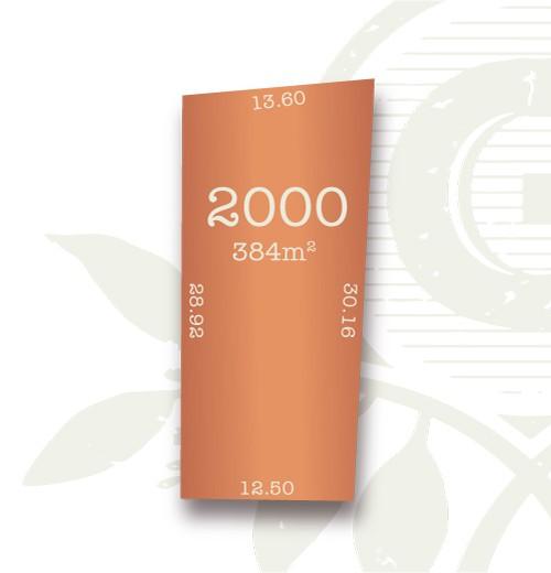Lot 2000