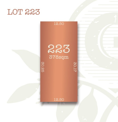 Lot 223