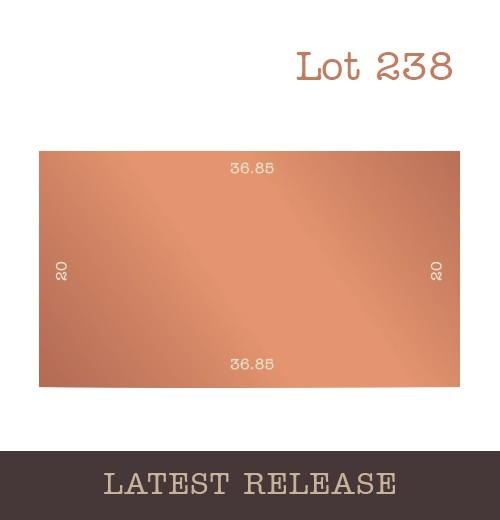 Lot 238