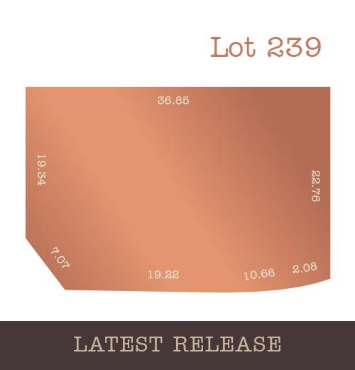 Lot 239