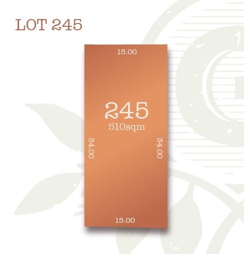 Lot 245