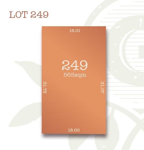 Lot 249