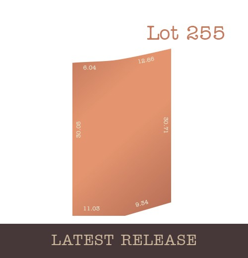 Lot 255