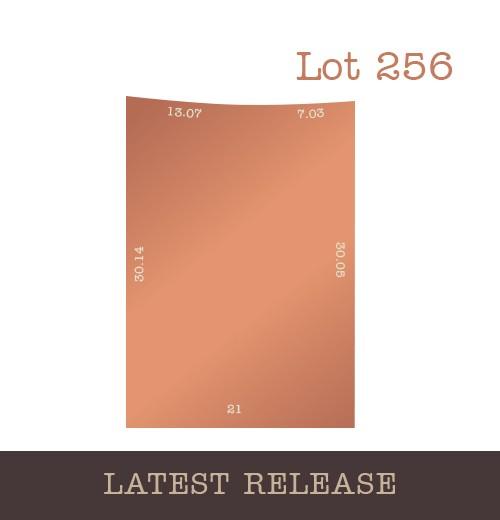 Lot 256