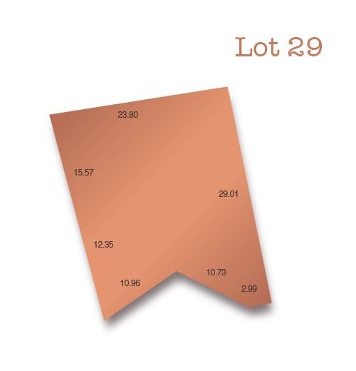 Lot 29