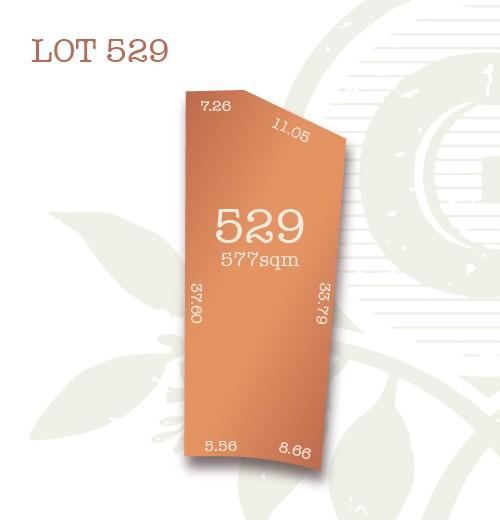 Lot 529